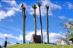 El parque metropolitano, los espera con una extensión de 557 hectáreas, ubicado al norte de la ciudad. Foto:Vía quito.com.ec. Imagen Por: