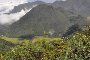 Inspiración y naturaleza juntos Foto:Vía quito.com.ec. Imagen Por: