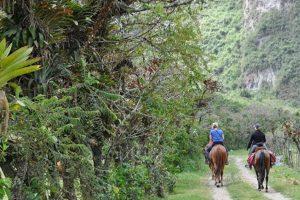Pululahua es uno de los sitios más secretos de Ecuador a tan solo 17 kilómetros al norte de Quito, se encuentra en el interior y en las laderas del volcán con el mismo nombre. Foto:Vía quito.com.ec. Imagen Por: