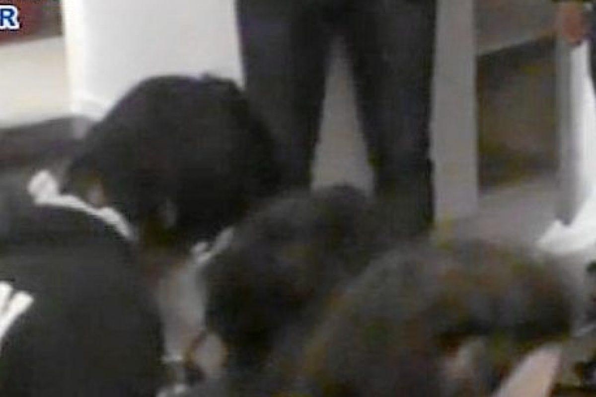 Tres de los detenidos Foto:Ministerio del interior español. Imagen Por: