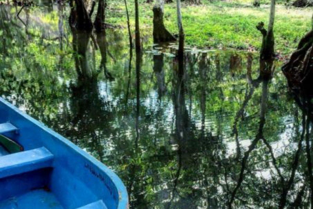 En este lugar, ubicado en el Caribe guatemalteco, pueden se combina la playa con paisajes de manglares. Foto:Vía https://instagram.com/explore/tags/riodulce. Imagen Por: