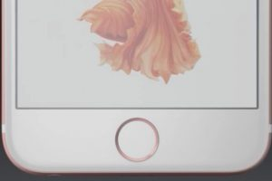 4- CÁMARA DE 12 MP EN LA PRINCIPAL Y 5 EN LA FRONTAL. Foto:Apple. Imagen Por: