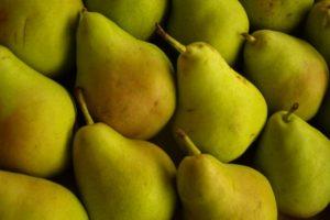 Comer un par antes de la noche de beber en exceso podría aliviar los síntomas de la resaca. Cabe señalar que el único tipo de pera probado en el estudio fue la pera asiática, o nashi. Foto:Pixabay. Imagen Por: