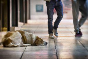 2. El tiempo. Foto:Getty Images. Imagen Por: