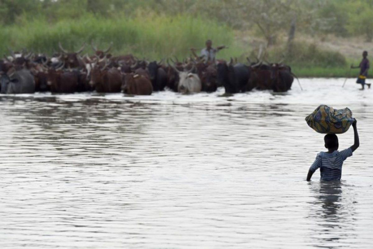 El lago Chad es una fuente de agua dulce que alimenta no solo a la cuenca del lago, sino que también a regiones de cuatro países: Nigeria, Níger, Chad y Camerún. Foto:AFP. Imagen Por: