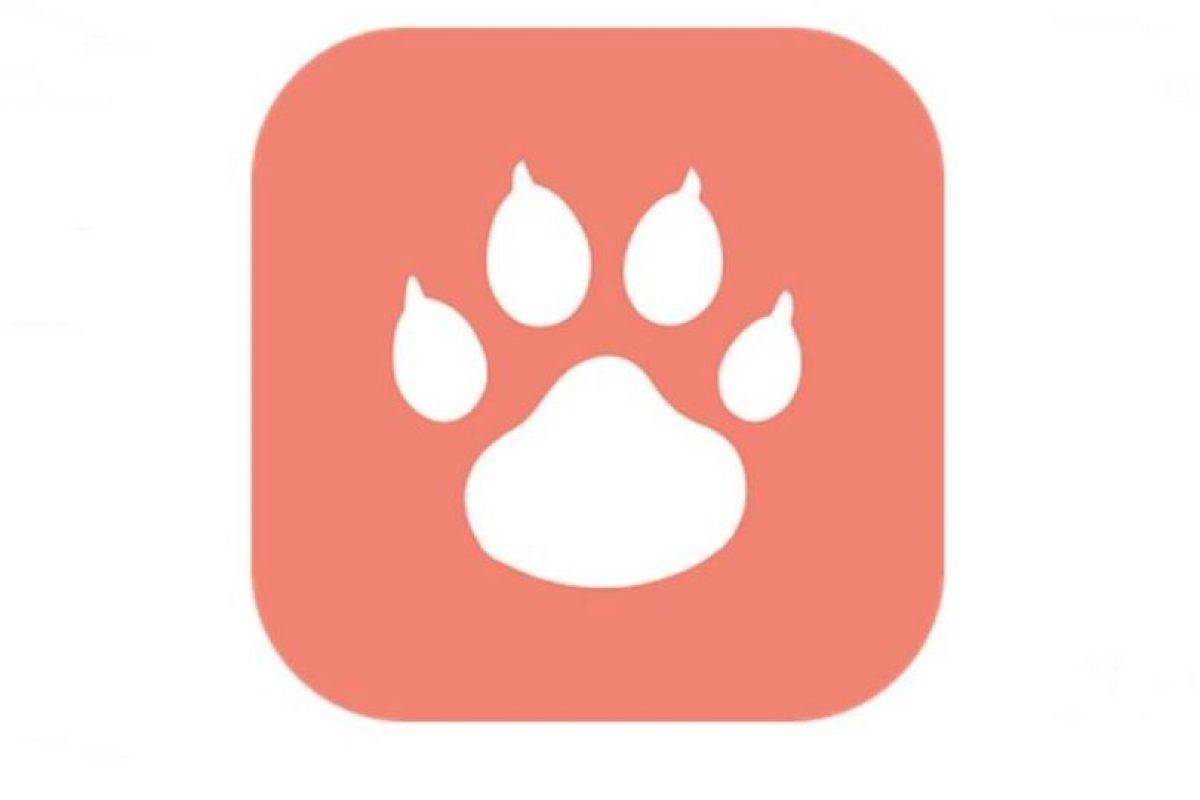 """Tindog: el nuevo """"Tinder para perros"""" Foto:Holidog. Imagen Por:"""