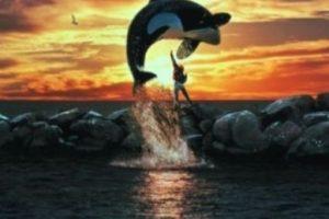 """7- """"Keiko"""" saltando. Foto:IMDB. Imagen Por:"""