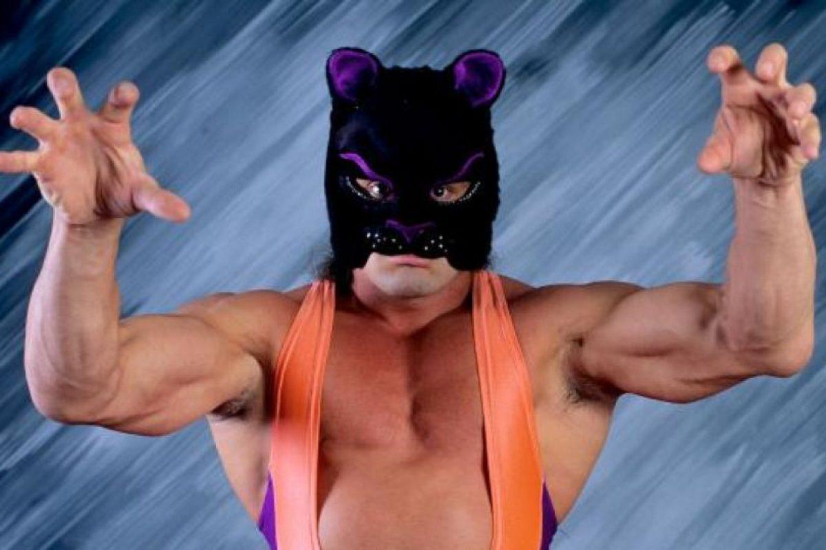 8. Battle Kat / Nosotros vemos un tierno gatito tratando de asustar. Foto:WWE. Imagen Por: