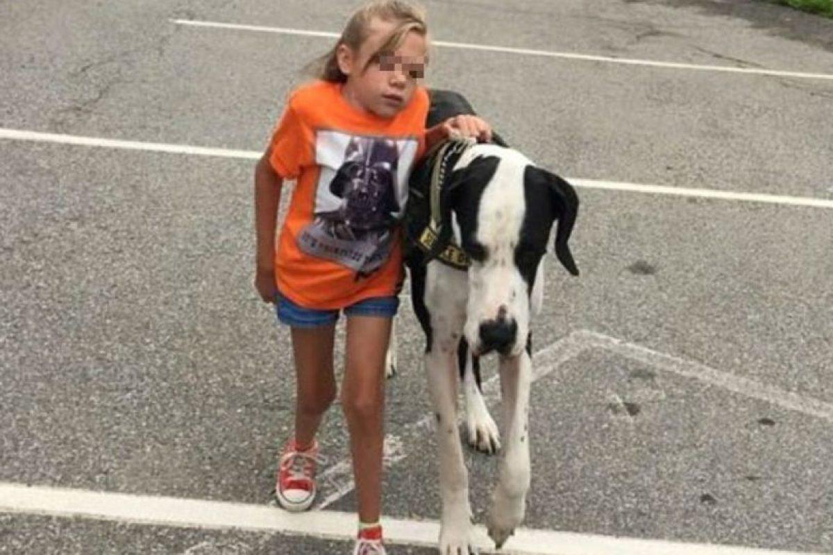 Su perro Gran Danés le ha ayudado en todo este proceso. Foto:Vía Facebook/Bella and George. Imagen Por: