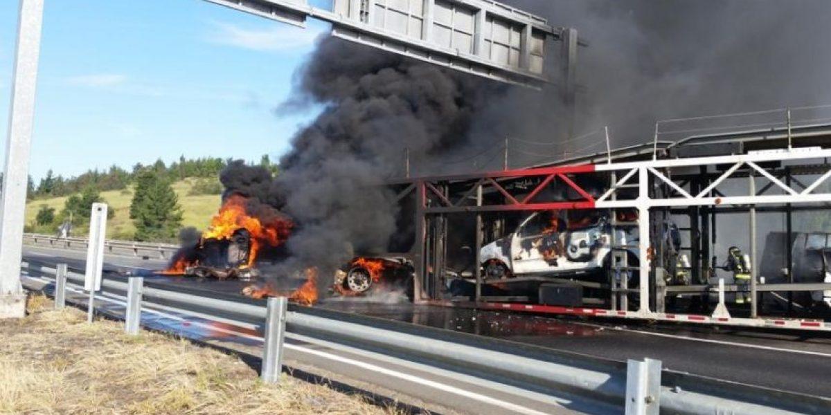 Camiones protagonizan fatal colisión en la Ruta del Itata