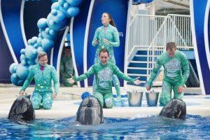 En las instalaciones de los parque acuáticos han causado la muerte de alguno de sus entrenadores. Foto:Vía Facebook SeaWorld. Imagen Por: