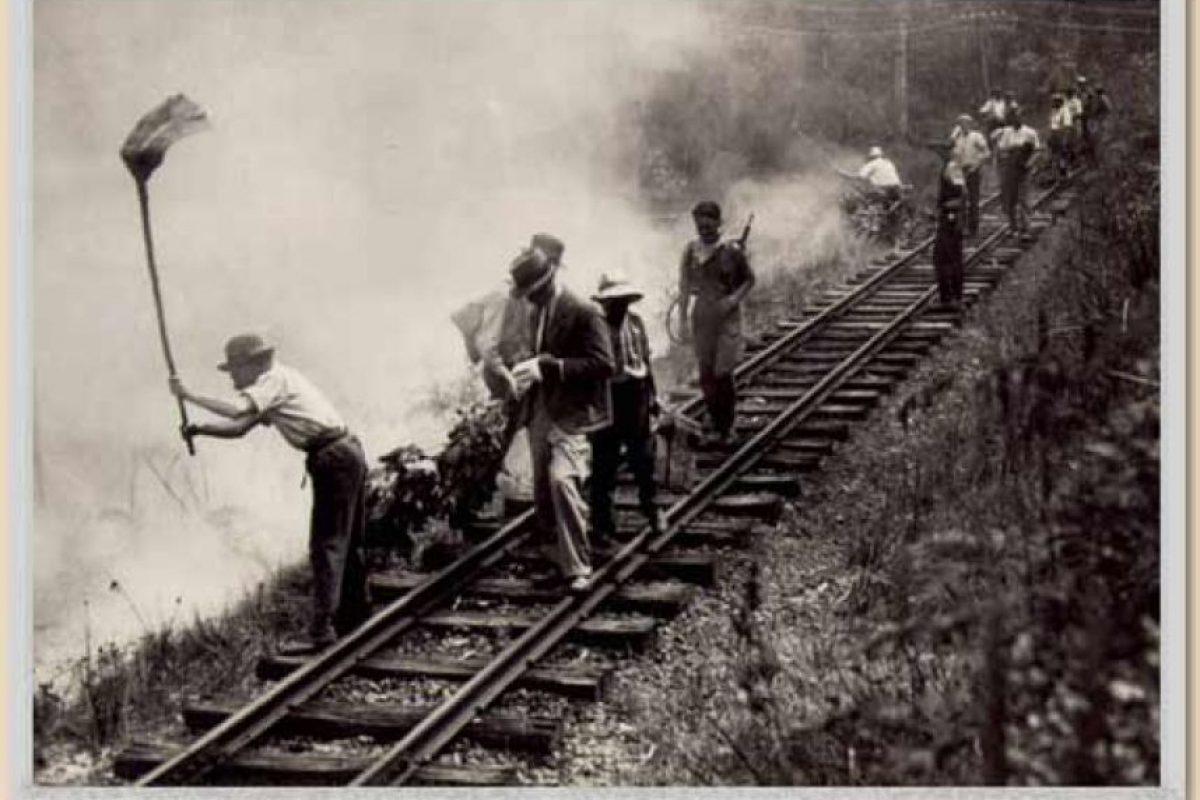 Los incendios forestales del Viernes Negro cobraron la vida de 71 personas Foto:www.depi.vic.gov.au. Imagen Por: