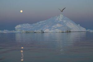 Ya que el nivel del mar podría aumentar más de 18 pulgadas (48 centímetros) Foto:Getty Images. Imagen Por:
