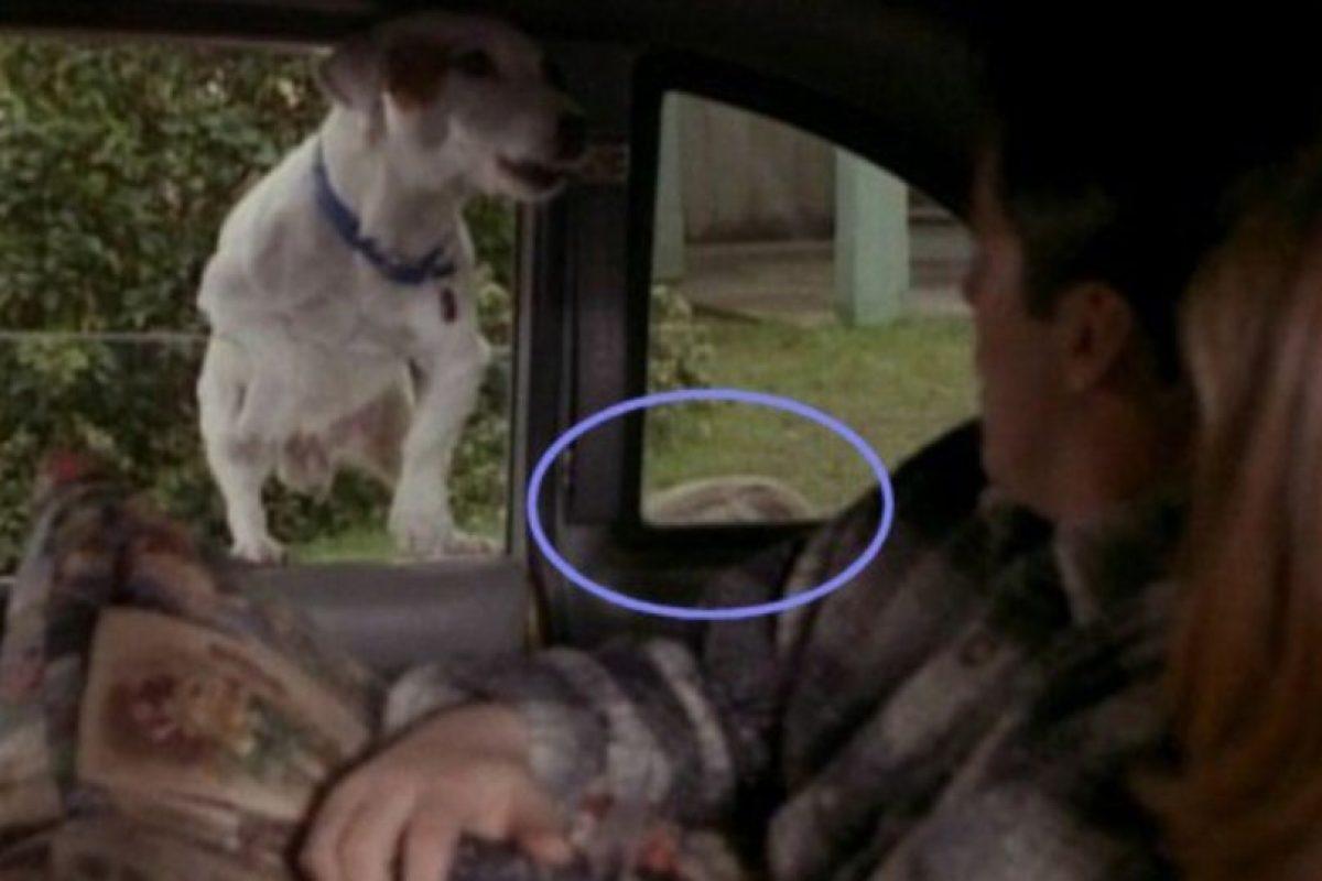 ¿Habían notado que el entrenador del perro se asoma en la ventana? Foto:Vía YouTube / Warner Bros. Imagen Por: