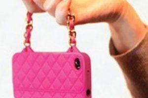 Una pequeña bolsa de mano. Foto:vía Pinterest.com. Imagen Por: