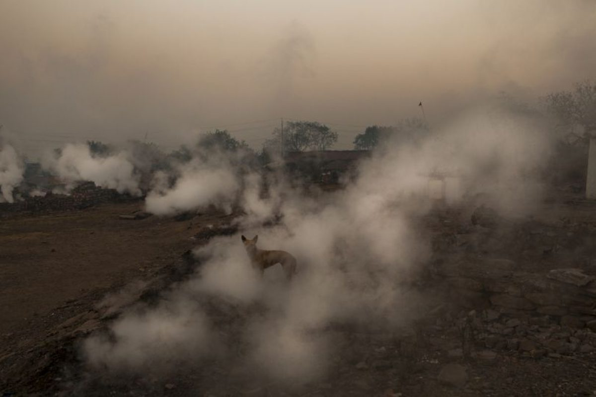 Algunas de estas ciudades son Lucknow, Ahmedabad y Raipur. Foto:Getty Images. Imagen Por: