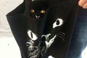Su rostro ha sido plasmado en camisetas, suéters y bolsos. Foto:Vía Instagram/princessmonstertruck. Imagen Por: