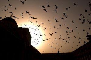 3. La vida en Siria Foto:Getty Images. Imagen Por:
