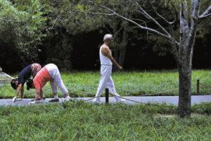 Lograron recorrer 100 metros en tan solo 15.71 segundos. Foto:Vía ChinaNews. Imagen Por: