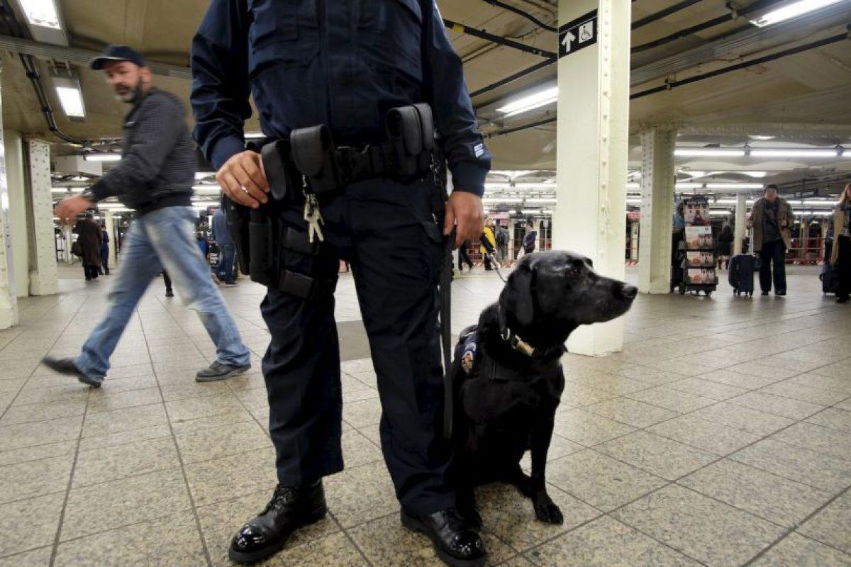 Un Policía de Nueva York con un perro en la estación de tren de Times Square tras las amenazas de ISIS. Foto:AFP. Imagen Por: