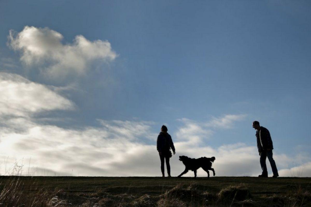 Además, una caminata de 20 minutos nos hace quemar entre 90 y 110 calorías. Foto:Getty Images. Imagen Por: