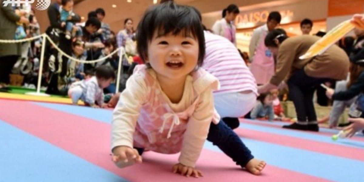 ¡Insólito!: más de 600 bebés participaron en carrera de gateo en Japón