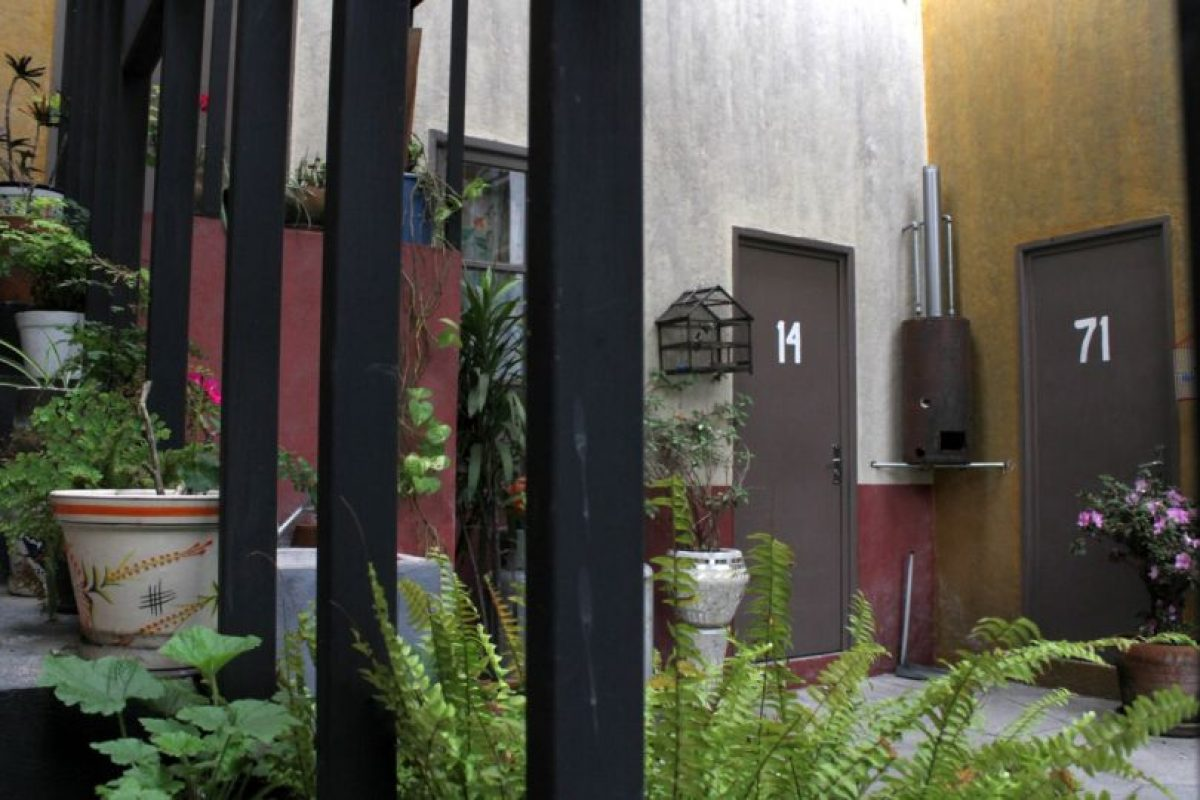 La vecindad siempre tenía plantas y flores. Foto:Nicolás Corte. Imagen Por: