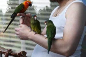 """Fue el primer """"hombre embarazado"""" del mundo. Foto:vía Getty Images. Imagen Por:"""