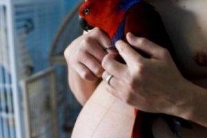 """Quien fuera """"Tracy"""", se cambió el sexo en 2002. Foto:vía Getty Images. Imagen Por:"""