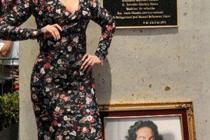 """El canal TLNovelas la nombró la """"Reina de las Telenovelas"""", por encima de Verónica Castro. Foto:vía Getty Images. Imagen Por:"""