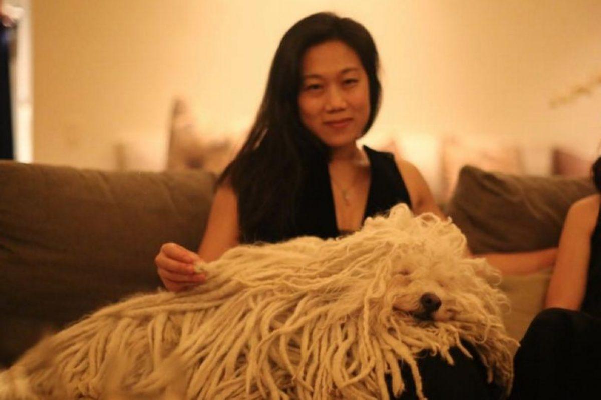 La pasa increíble. Foto:facebook.com/beast.the.dog. Imagen Por: