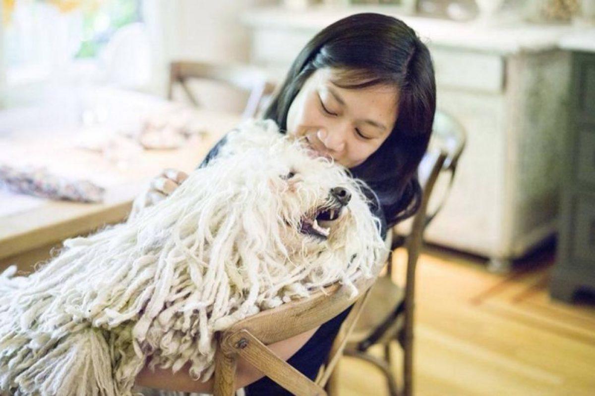 Priscila lo consiente. Foto:facebook.com/beast.the.dog. Imagen Por: