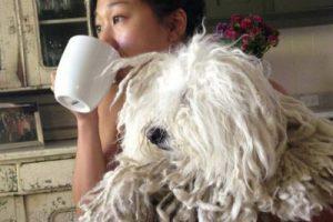 Acompañando a Priscilla Chan. Foto:facebook.com/beast.the.dog. Imagen Por:
