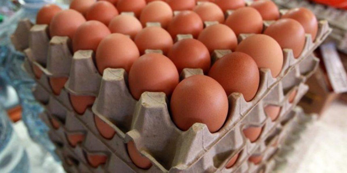 Advierten de riesgo sanitario por tráfico de huevos desde Bolivia