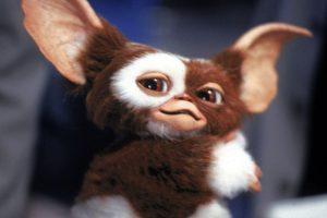 La criatura pertenece a una especie animal que bajo determinadas circunstancias se transforma en un pequeño monstruo muy destructivo. Foto:Warner Bros. Imagen Por: