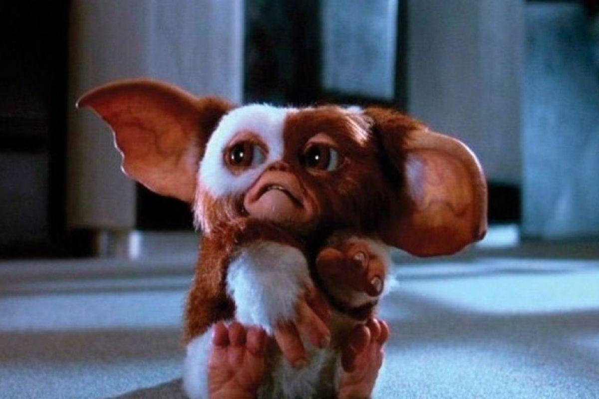 """""""Gizmo"""" es el único que no se convierte gracias a que no fue alimentado. Foto:Warner Bros. Imagen Por:"""