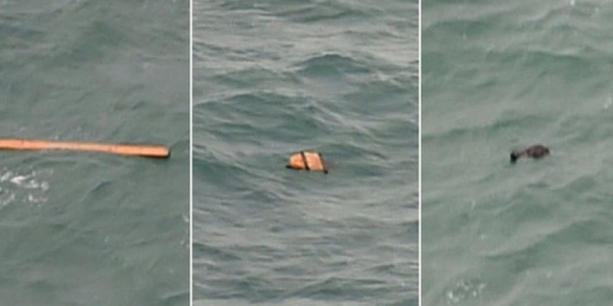 Tragedia del vuelo AirAsia: revelan la causa que provocó la muerte de 162 personas