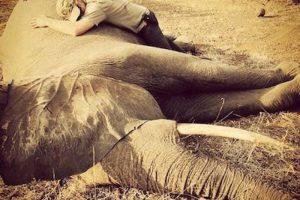 Incluso, abrazó a un elefante Foto:Instagram.com/KensingtonRoyal. Imagen Por: