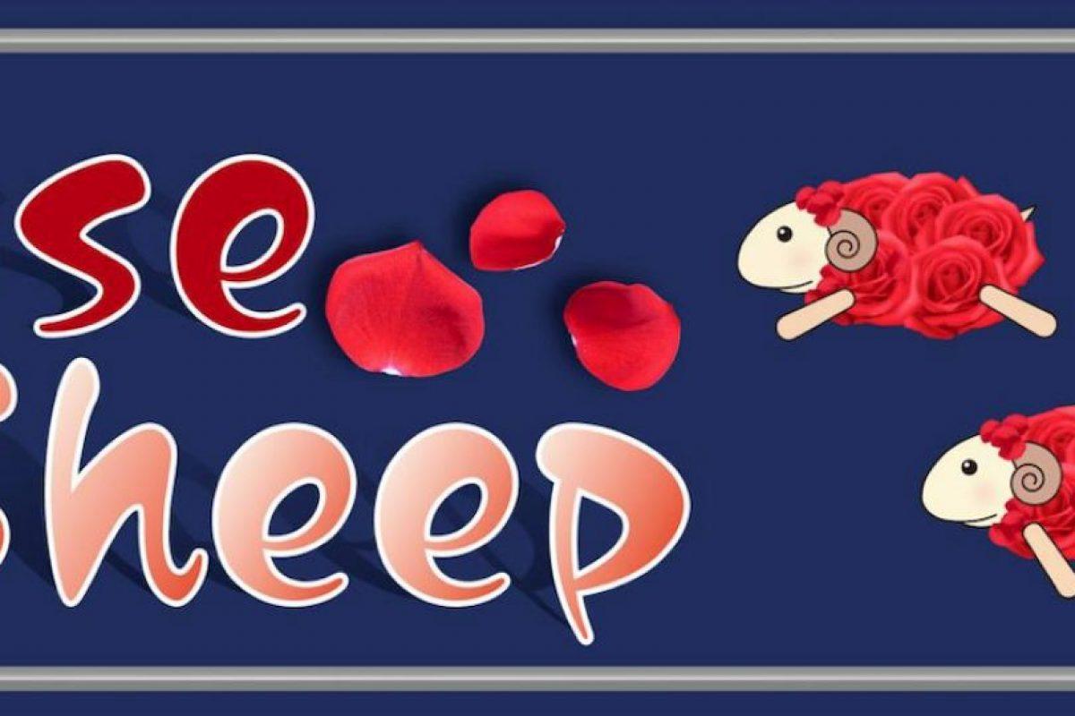 También pueden ser buenos oyentes con aquellas mujeres que lo soliciten. Foto:Vía facebook.com/rosegroup.sheep. Imagen Por: