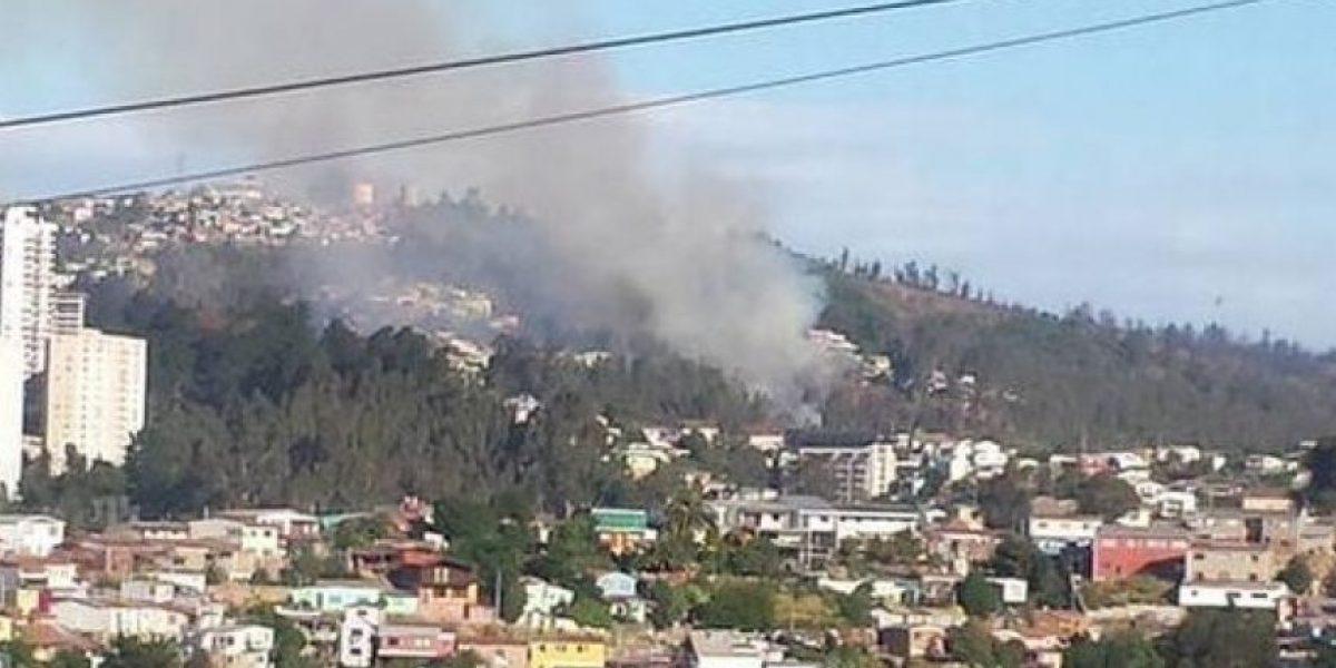 Valparaíso: declaran Alerta Roja por incendio forestal en Villa Rapa-Nui