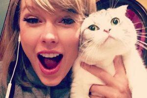 4- Taylor Siwft diciendo que su gata Meregith es alérgica a disfrutar. 2.4 millones de me gusta. Foto:vía instagram.com/taylorswift. Imagen Por: