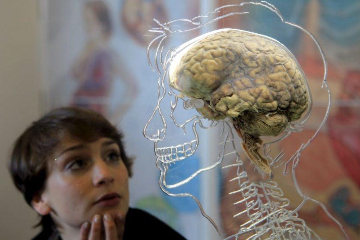 Aunque afecta principalmente a las personas mayores, la demencia no constituye una consecuencia normal del envejecimiento. Foto:Getty Images. Imagen Por: