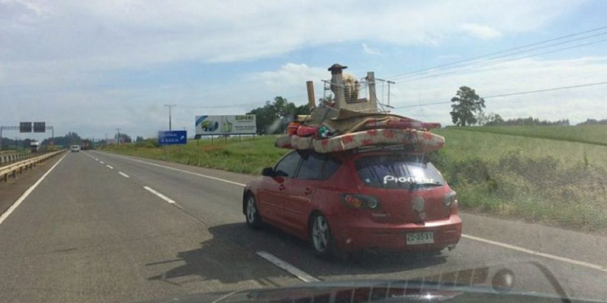 Insólita carga en automóvil sorprende a conductores en Ruta 5 Sur