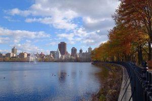 Central Park en Nueva York, Estados Unidos. Foto:vía instagram.com/soulsofsweden. Imagen Por:
