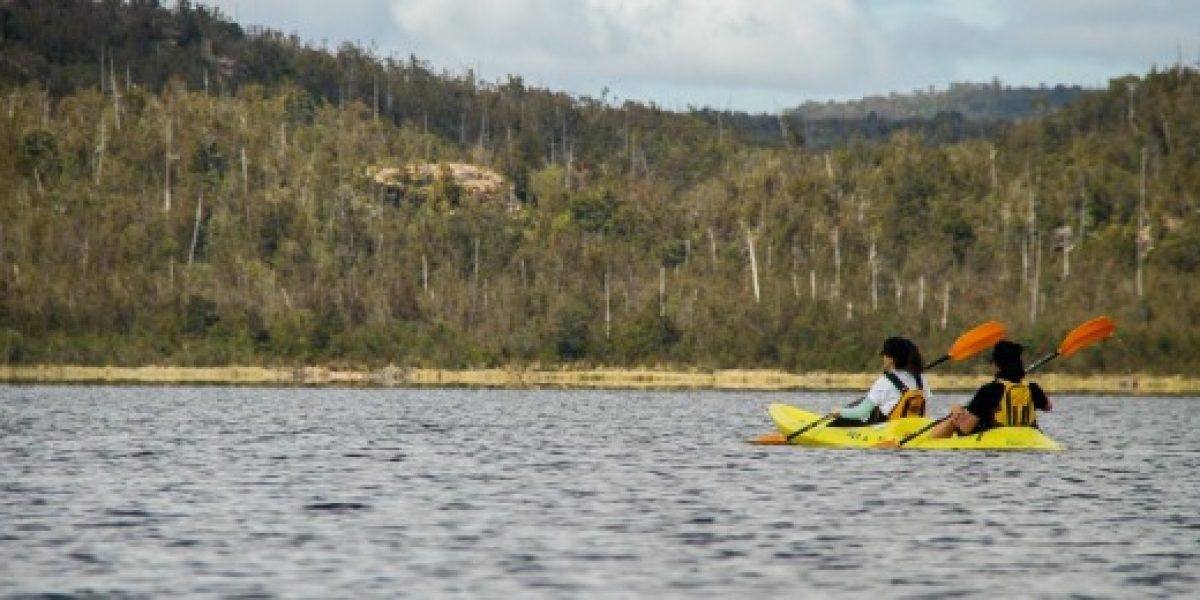 Parque Tantauco celebra sus diez años de existencia