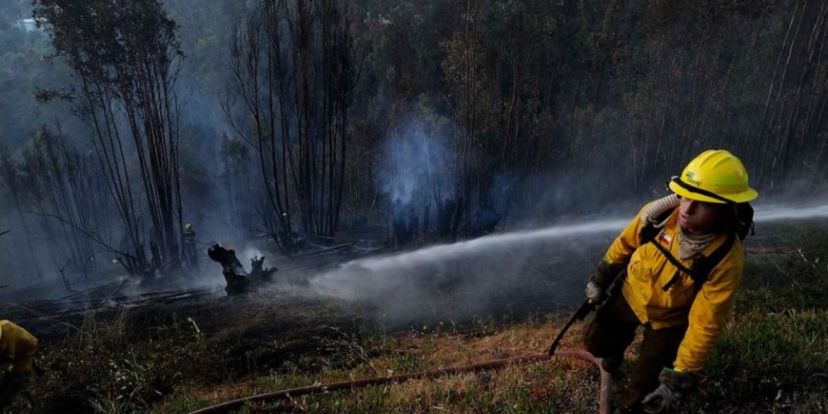 Las lamentables imágenes que dejó el feroz incendio en Valparaíso