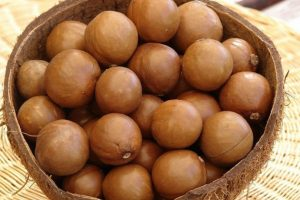 4. Nuez Macadamia. Proviene del árbol de macadamia, que produce el fruto después de casi 10 años. Foto:Vía Flickr. Imagen Por: