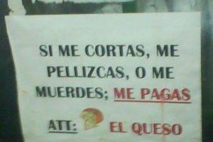 Dios mío, quesos que hablan. Foto:vía Colombianadas.net. Imagen Por: