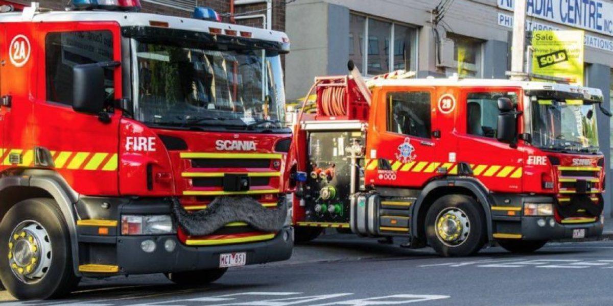 Bomberos logran salvar la vida de un cachorro tras incendio