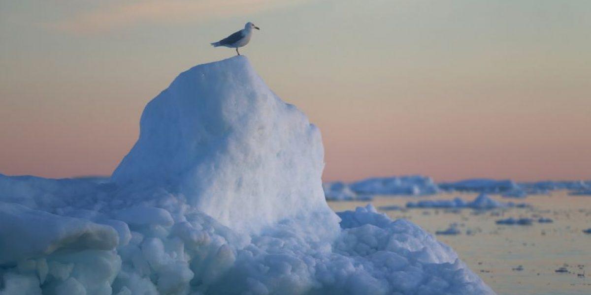 4 regiones de glaciares amenazadas por el cambio climático